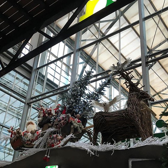 kerst intratuin kerstman duiven
