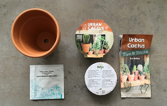 Zelf Cactussen Kweken xenos urban cactus kit