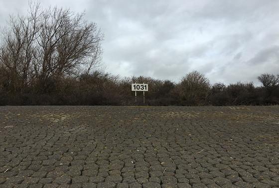 Ploggen 8 Maart 2016: Rondje Hoek van Holland en Bunkers in de duinen 1031