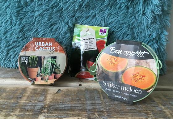 Ploggen 9 Maart 2016: Shoppen in Den Haag cactus en suikermeloen