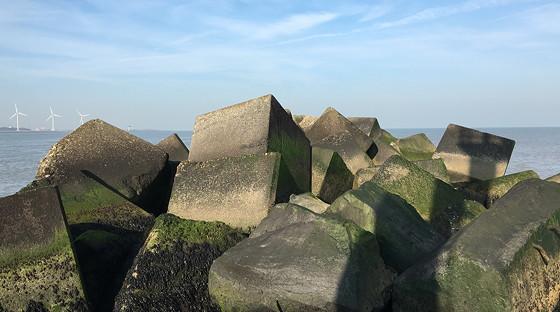 Ploggen 10 Maart 2016: Wandeling op de pier en op visite einde pier