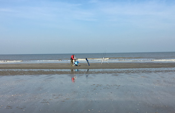Ploggen 10 Maart 2016: Wandeling op de pier en op visite visser