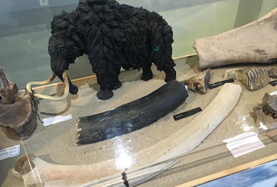 Ploggen 11 Maart 2016: Bezoek Futureland en Rondvaart Maasvlakte 2 archeologische vondsten