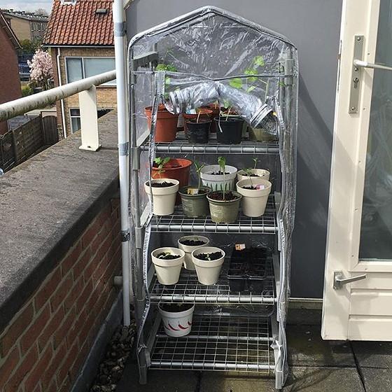 tuinkasje opgebouwd