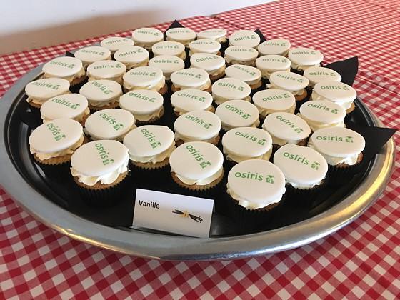 Ploggen 13 Oktober 2016: Osirisdag en Lifestylelab Osirs Cupcakes
