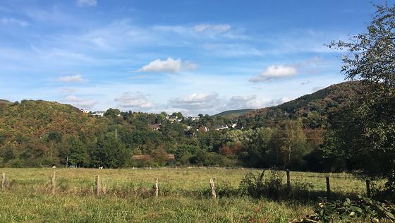 Ploggen 15 Oktober 2016: naar Heimbach parkeerplaats