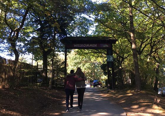 Ploggen 16 Oktober 2016: naar Hochwildpark Rheinland wildpark