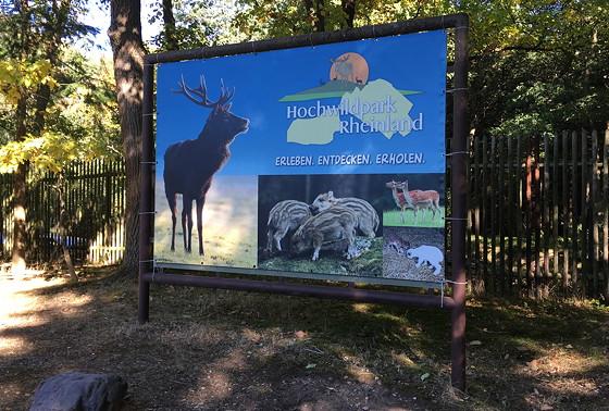 Ploggen 16 Oktober 2016: naar Hochwildpark Rheinland