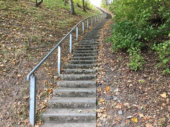 Ploggen 17 Oktober 2016: Wandelen bij de Rursee trap 1
