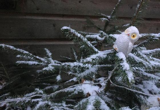 sneeuw in Veenendaal